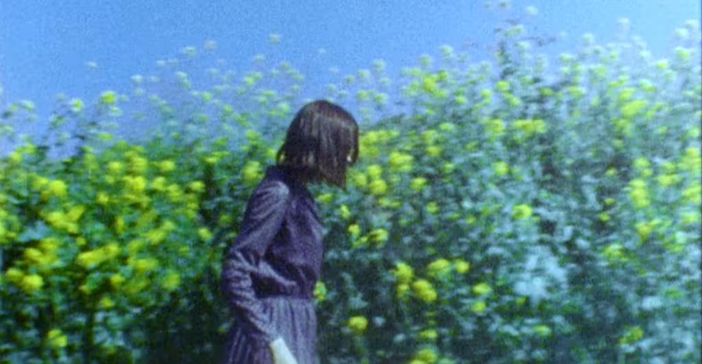 For Tracy Hyde Hits Dreampop Bliss On 'Sakura No En'