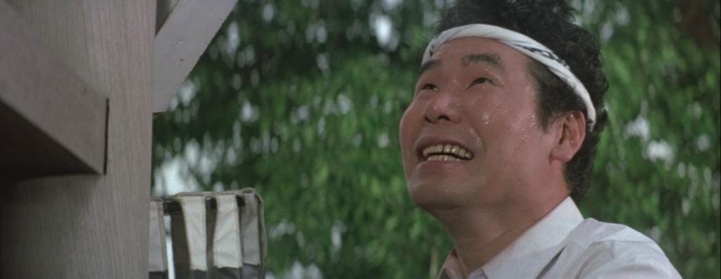 Understanding Tora-san (Otoko wa Tsurai yo), Japan's Record-Breaking Film Franchise - Your Japanese Film Insight #3