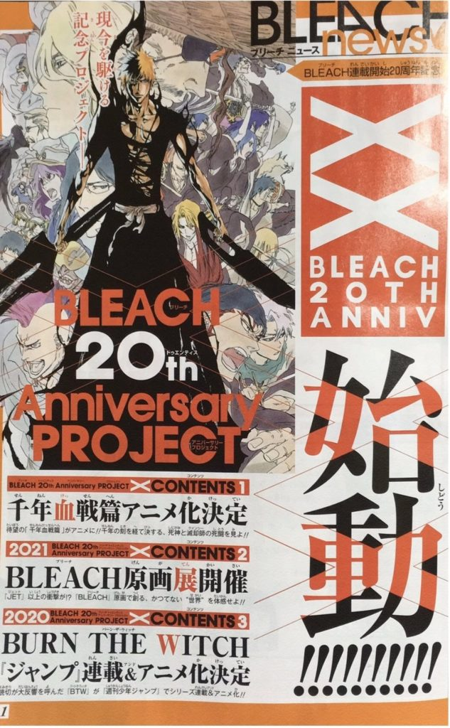 Bleach new Anime Details