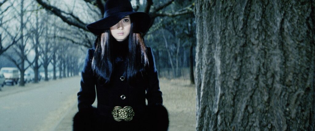 Lady Snowblood and Female Prisoner Scorpion: The Elegant Ultraviolence of Meiko Kaji - Your Japanese Film Insight #16
