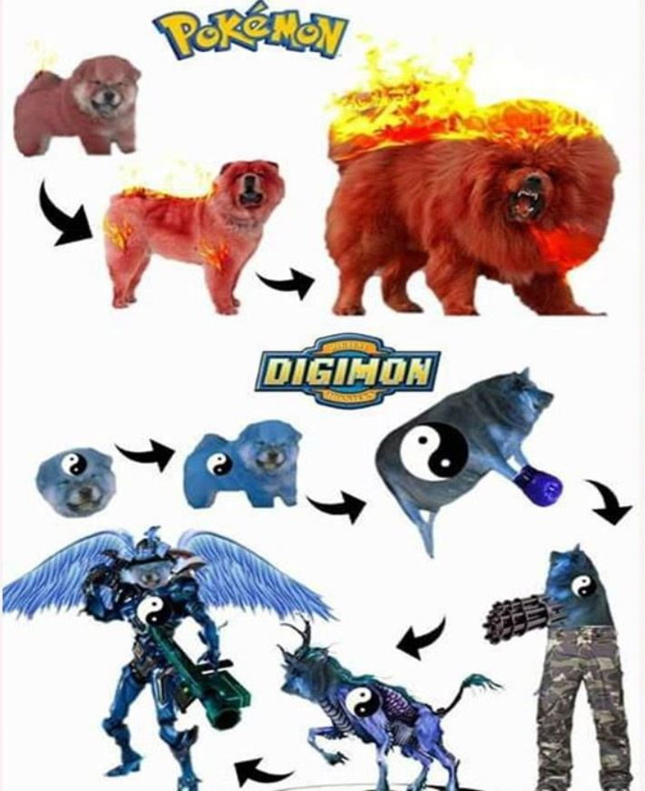 Digimon vs Pokemon Evolutions