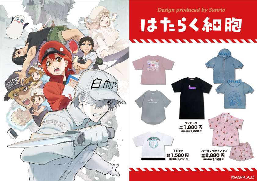 Cells At Work x Sanrio Collaboration Items and Visual