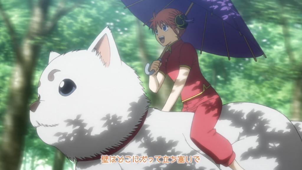 Kagura riding Sadaharu, Gintama