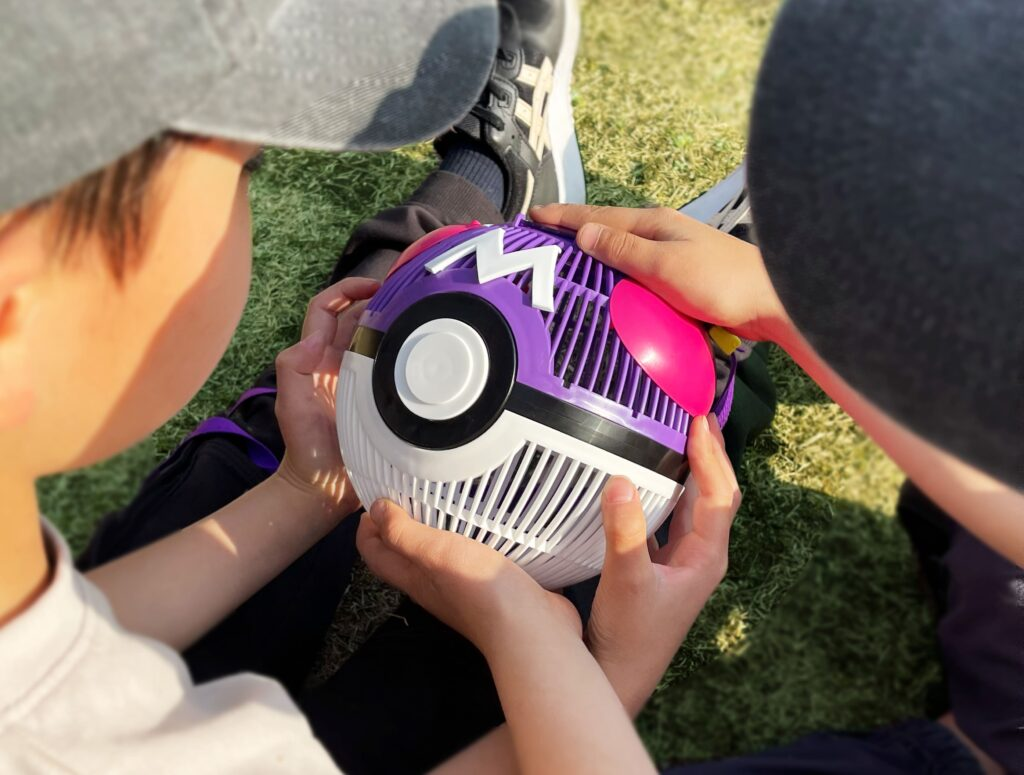 Master Ball Bug Catcher