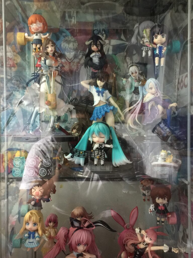 anime figures in detolf glass case